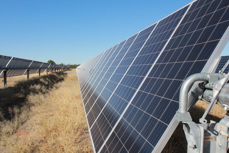 An image of the solar farm at Oakey